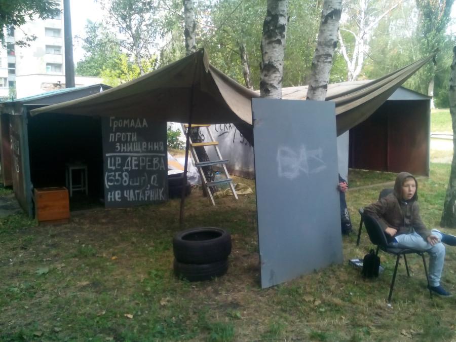 Обыски у мэров Бучи и Ирпеня прошли в рамках дела о хищении 890 га леса, - Луценко - Цензор.НЕТ 7053