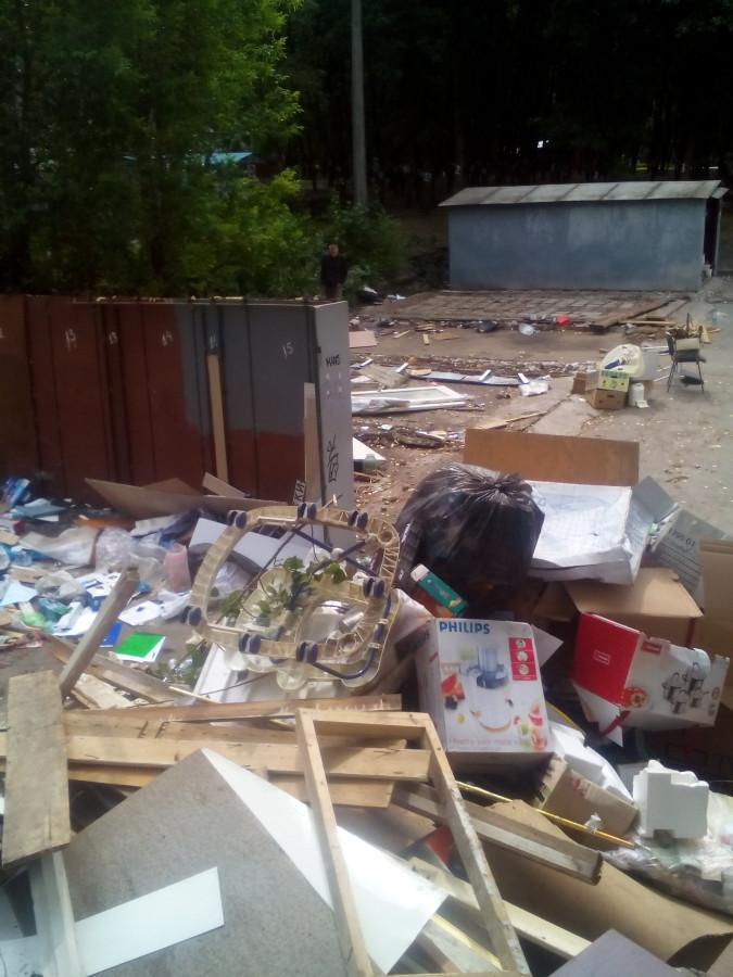 Обыски у мэров Бучи и Ирпеня прошли в рамках дела о хищении 890 га леса, - Луценко - Цензор.НЕТ 5332