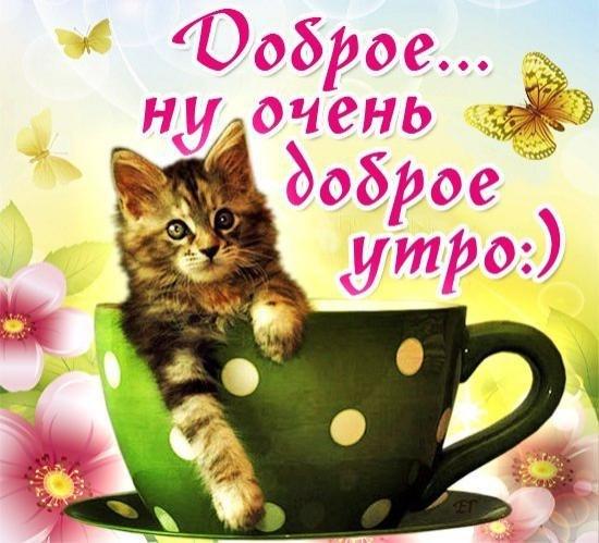 Поздравление с добрым утром