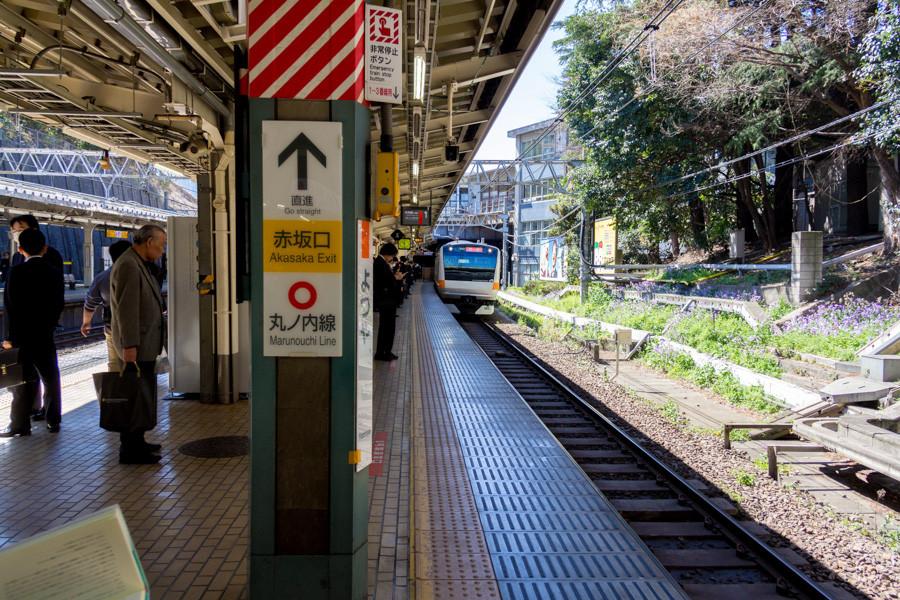 japweb-0258