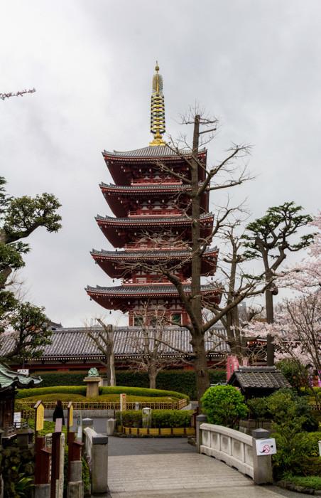 japweb-0056