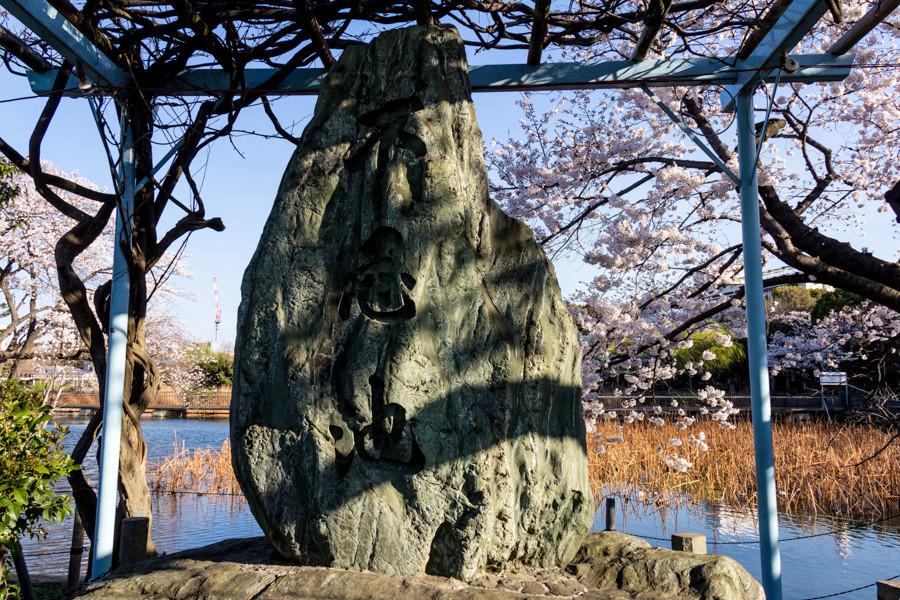 japweb-0164
