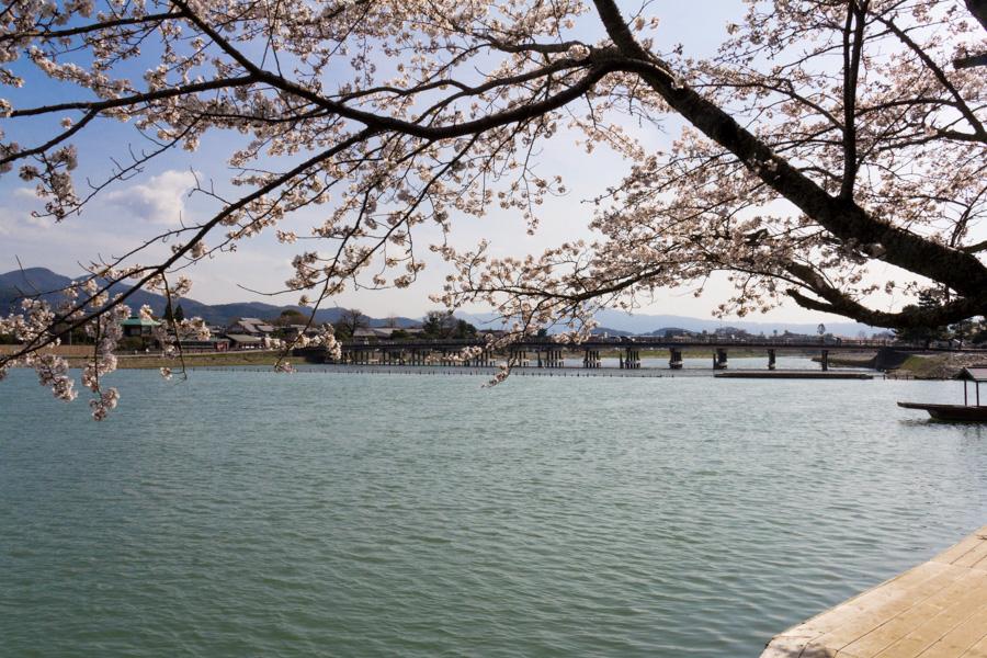 japweb-0524