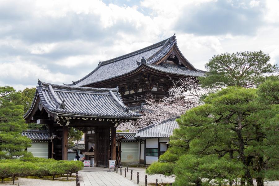 japweb-0568