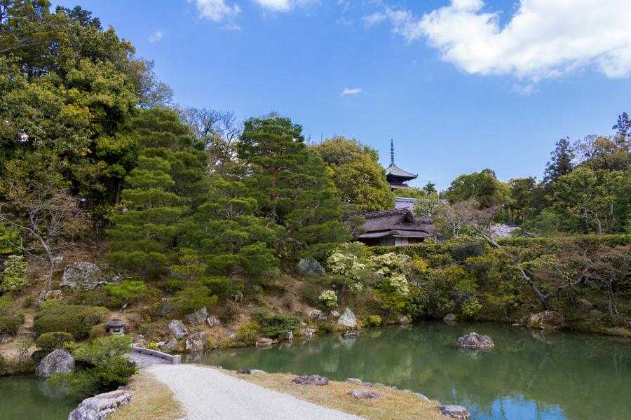 japweb-0571