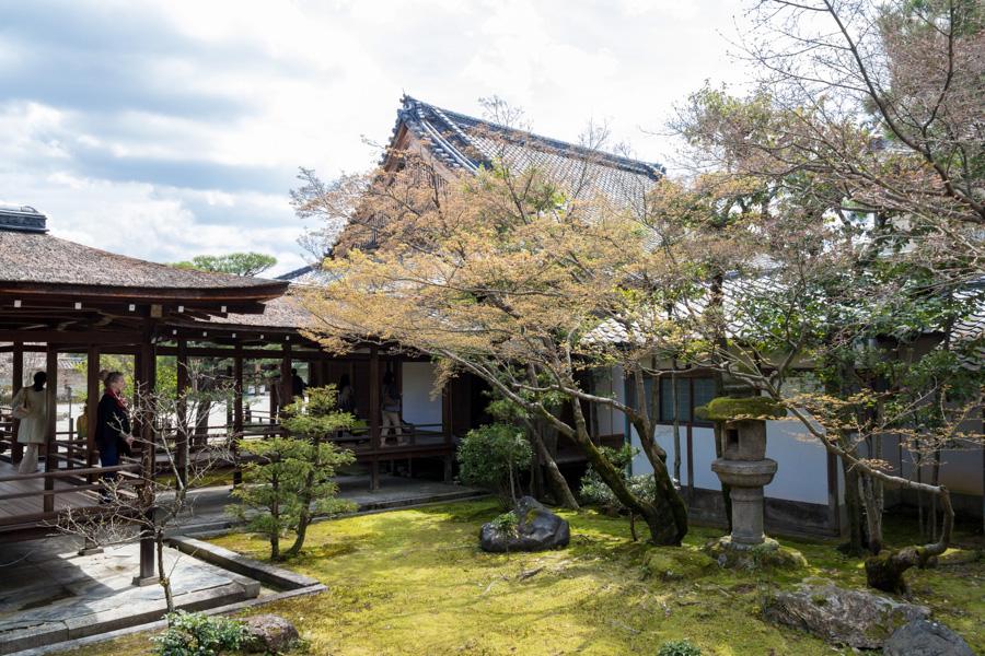 japweb-0576