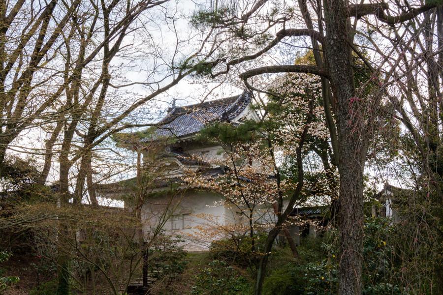 japweb-0615
