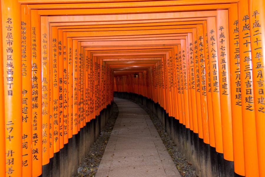 japweb-0670