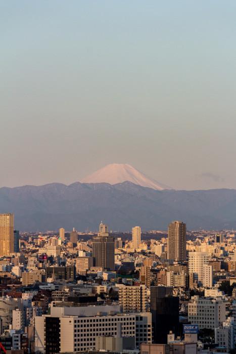 japweb-0152