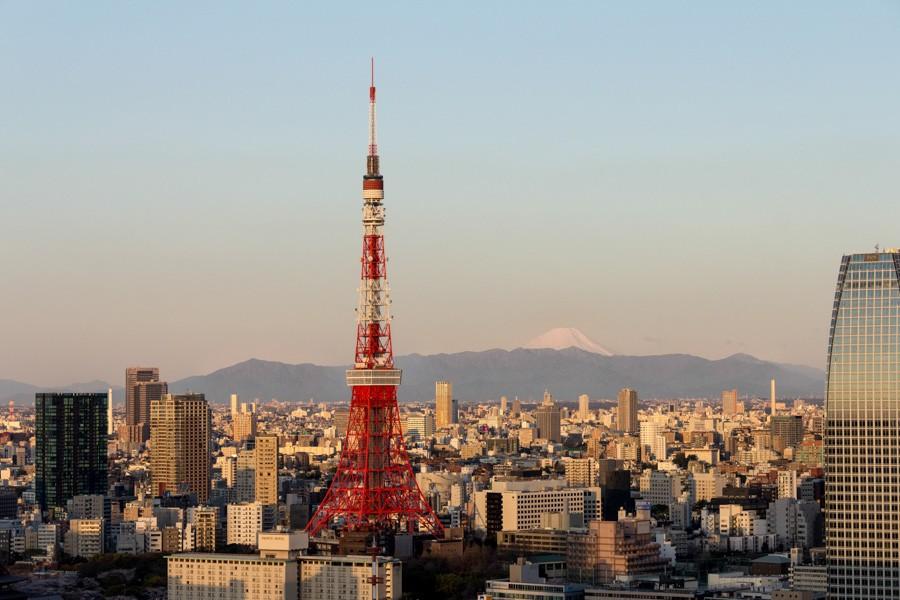 japweb-0153