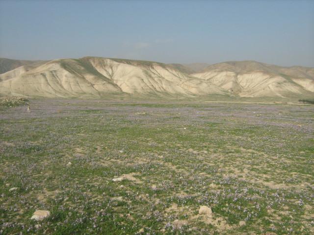Начало пути - вид на отроги Самарии от Иордана