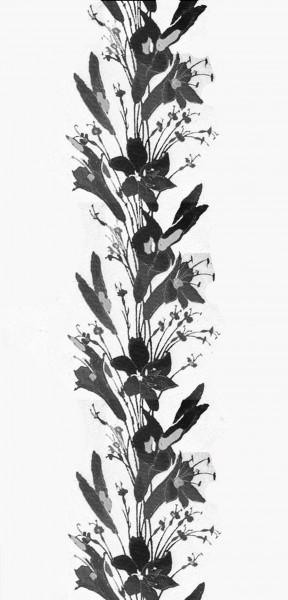 liliesinvertedweb