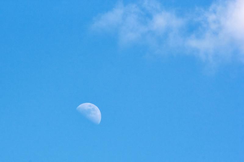 Половинка Луны