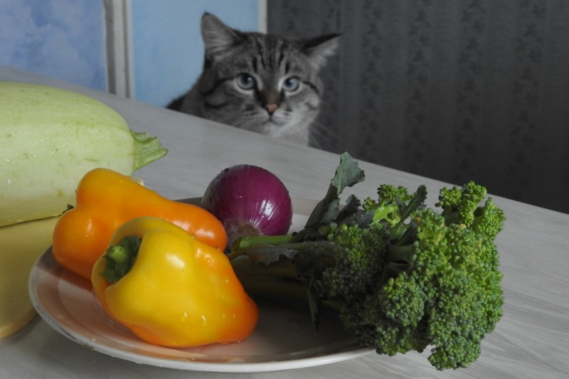 5. Подготовка к готовке рагу с цветной капустой (Мур-Мурыч контролирует процесс)
