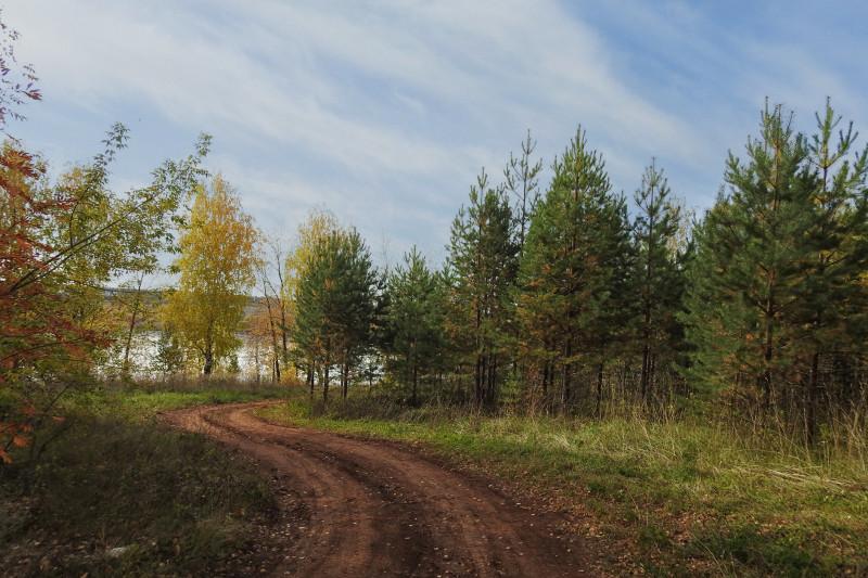 Уже просматривается впереди Сепычевский пруд