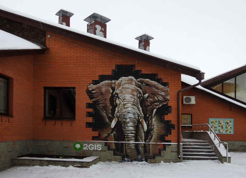 Граффити слона на стене Государственного зоопарка Удмуртии