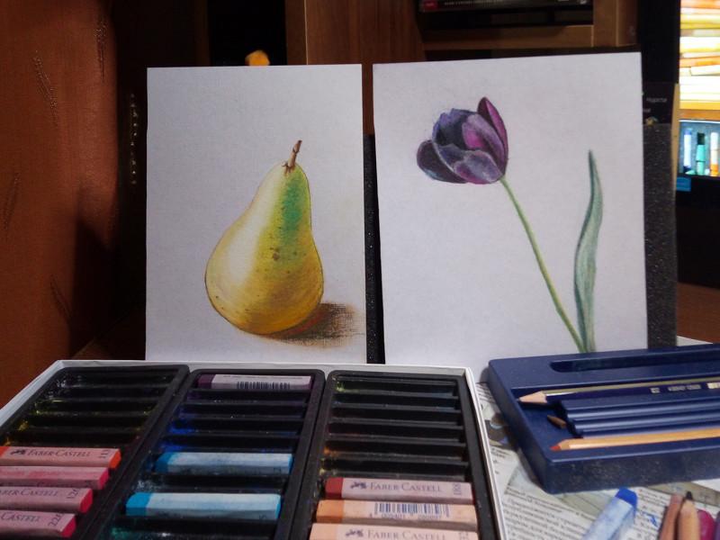 Груша и тюльпан мягкой сухой пастелью Faber Castel с использованием фиксатива