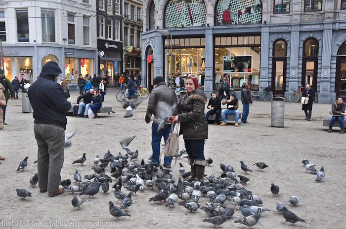 amsterdam (46 of 68)