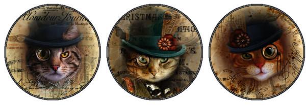 стимпанк-коты