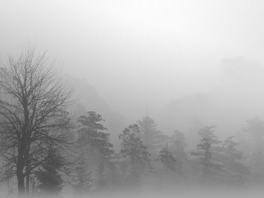 92e942932 93890291593294d92a: 1680x1050;91f94d92f93e917: #leaves, #web, #dew, #river, #autumn, #morning, #fog