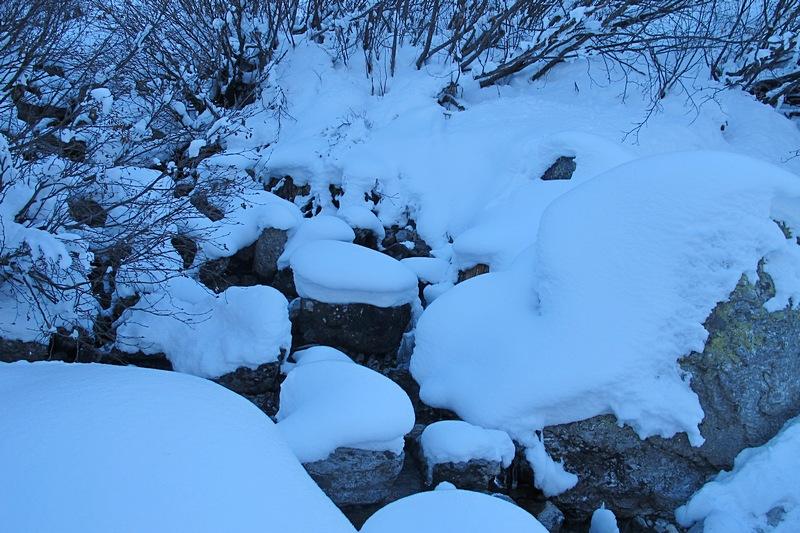 Vallee Berar Chamoni 13
