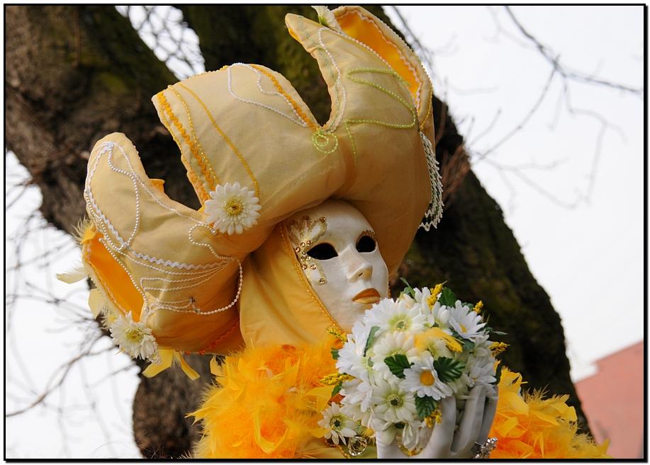 Венецианский карнавал ... carnaval 31