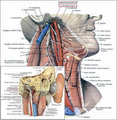 снятие боли при остеохондроза поясничного отдела