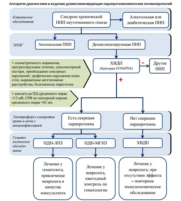 Анализ крови на парапротеин м-градиент гемцентр Справка 001-ГС у Алма-Атинская