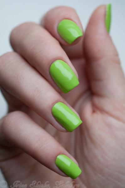 Nibar-Chartreuse