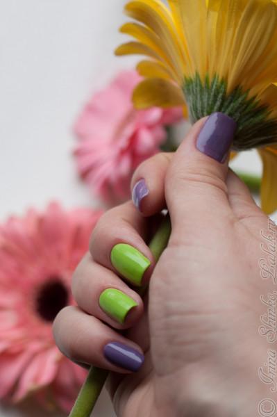 Nubar_Chartreuse&Romance