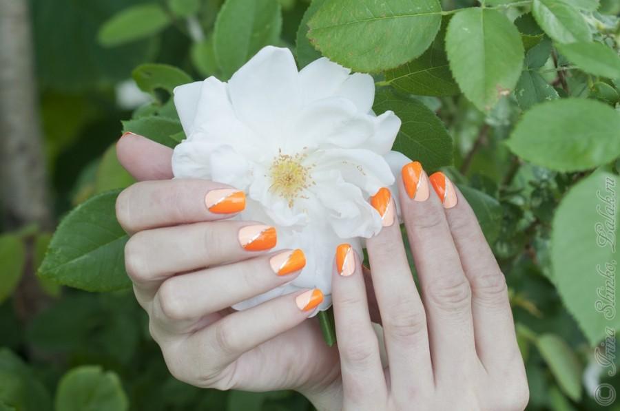 Nubar_Hot_Orange&Succulent-10-1