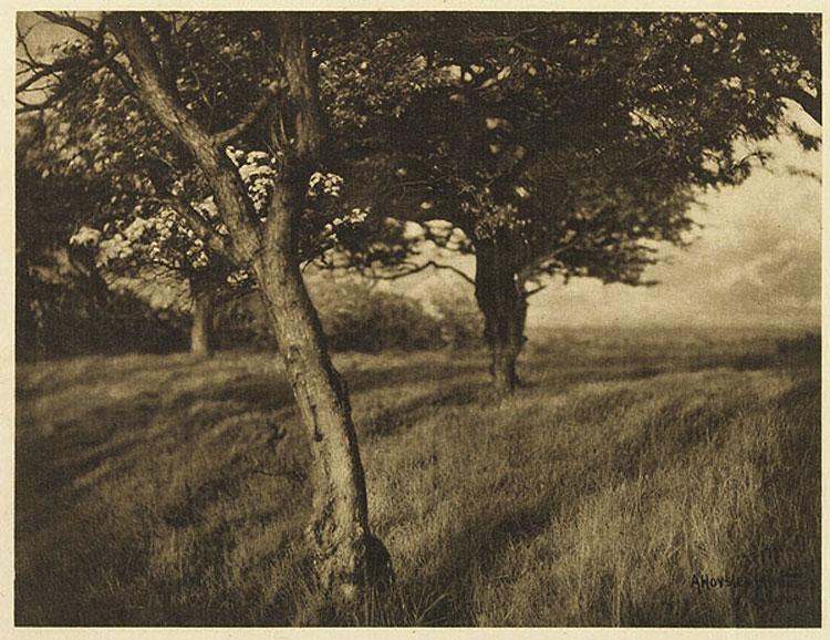 Alfred-Horssley-Hinton1