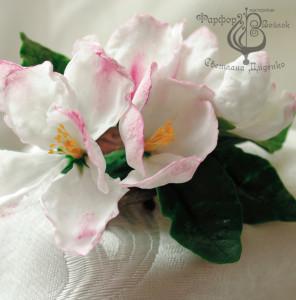 Яблоня розовая 3