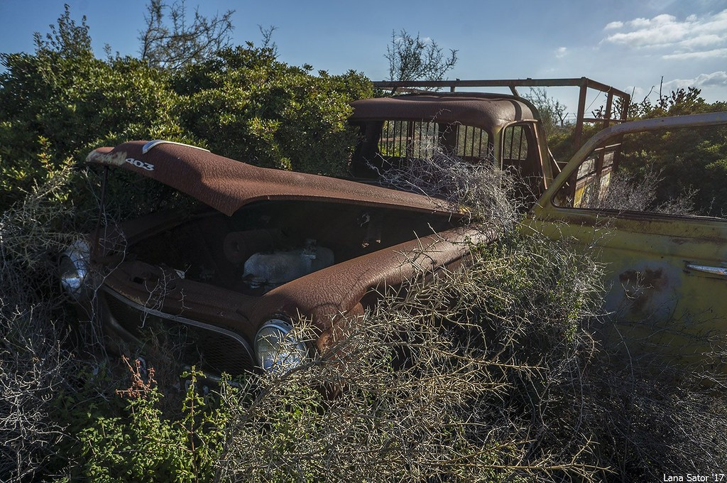 кладбище ретро автомобилей