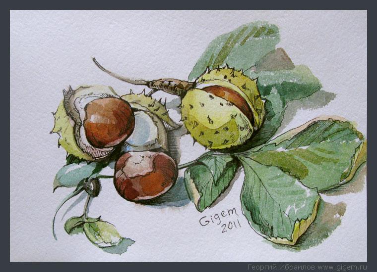 gigem_chestnuts