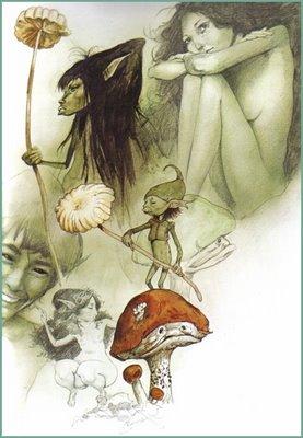 brian froud faeries