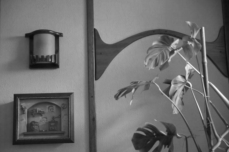 Черно белый Житомир