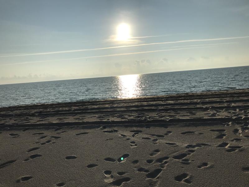Следы-свидетели присутствия людей на пляже до нас.