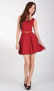 Reis Skater Dress in Red1