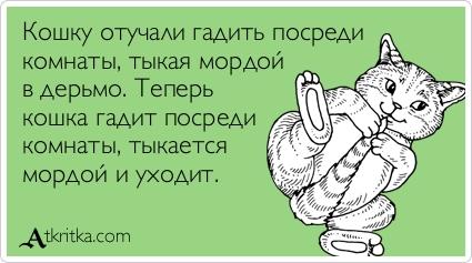 atkritka_koshka