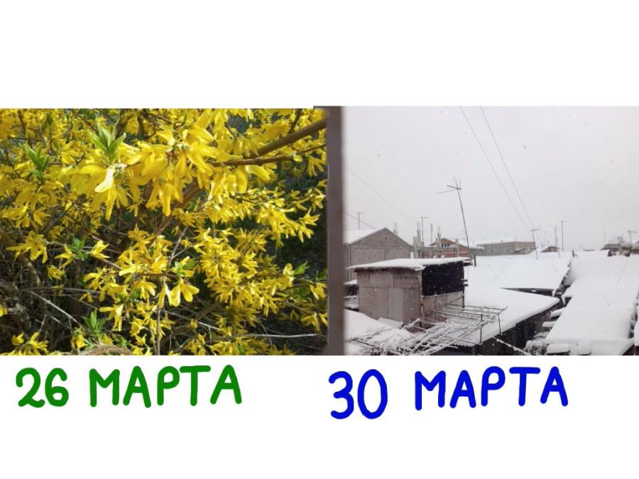30 marta_foto