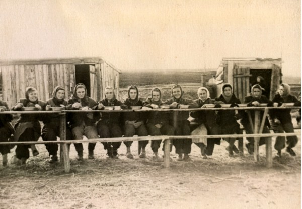 На работе в колхозе, 1959 год