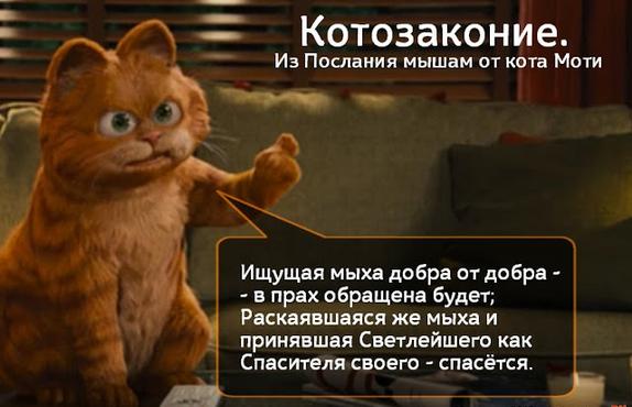 Блог Кота Моти  - Страница 2 1262025_600