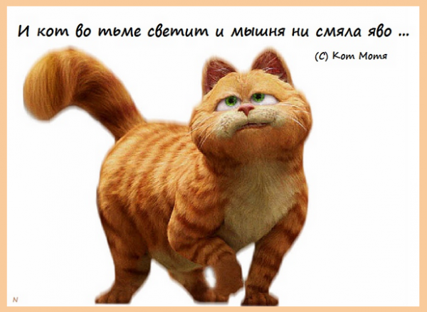 Блог Кота Моти  - Страница 2 1263037_600
