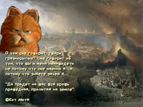 Блог Кота Моти  - Страница 2 1264109_600