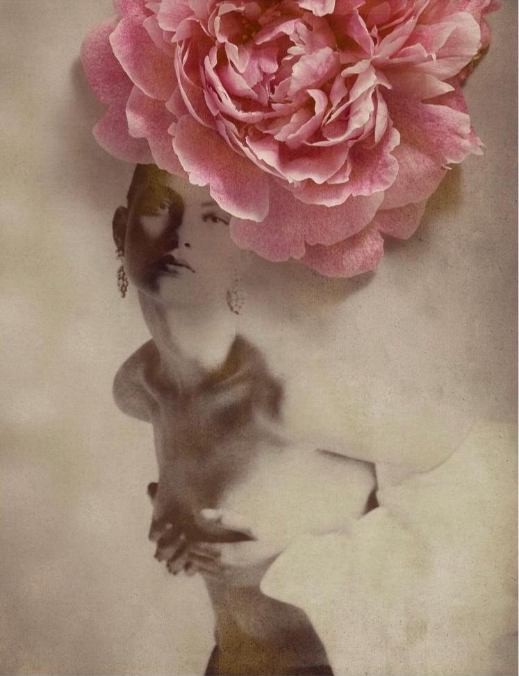flowers_gastel_04.jpg