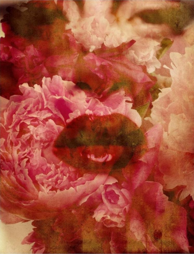 flowers_gastel_03.jpg