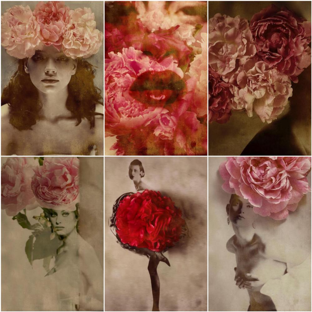 flowers_gastel_6in1.jpg