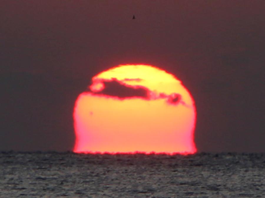 Заход Солнца (с солнечным пятном группы 2786) над Японским морем - 26.11.2020.