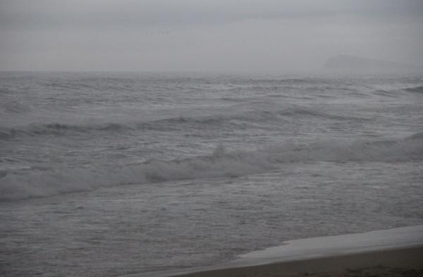 22.07.2019(вечером),над Японским морем,вблизи п.Южно-Морской-во время уходящего тайфуна Данас-летела стая птиц,преодолевая стихию